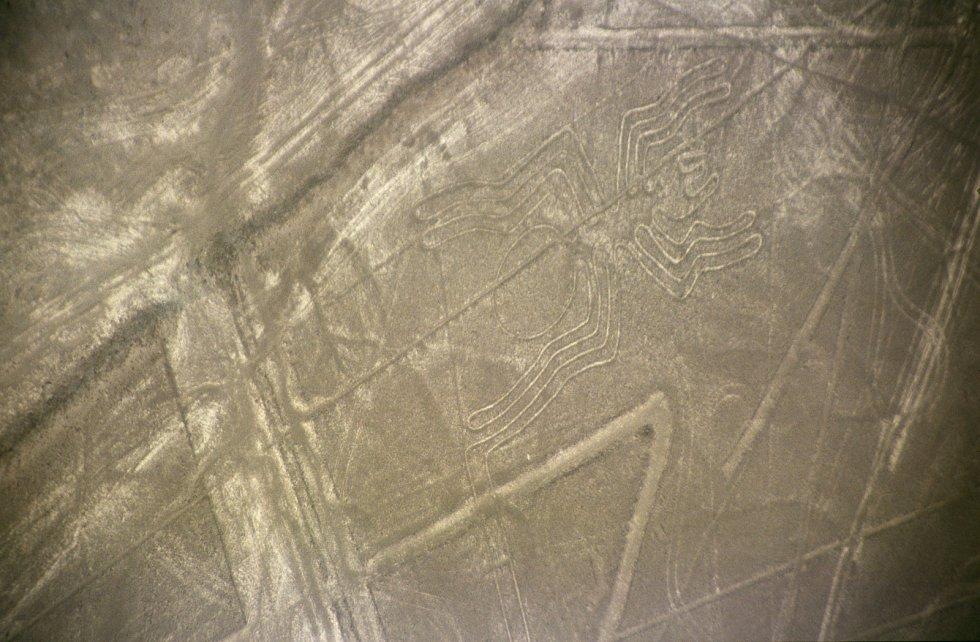 Obrazce v peruánské oblasti Nazca.