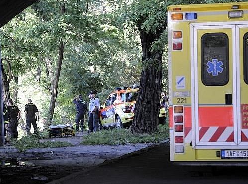Policista, který řídil vůz policejní ochranné služby, s nímž v sobotu odpoledne spadl po nehodě z Hlávkova mostu do Vltavy, v neděli zemřel.