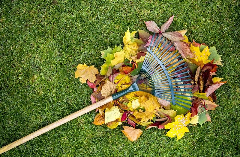 Konec zahradnické sezony