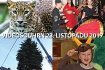 Videosouhrn Deníku – 23. listopadu 2017