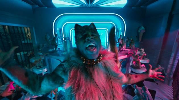 Nové filmové zpracování legendárního muzikálu Kočky