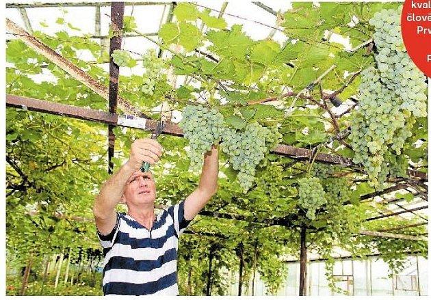 vinař Givi Chubinidze