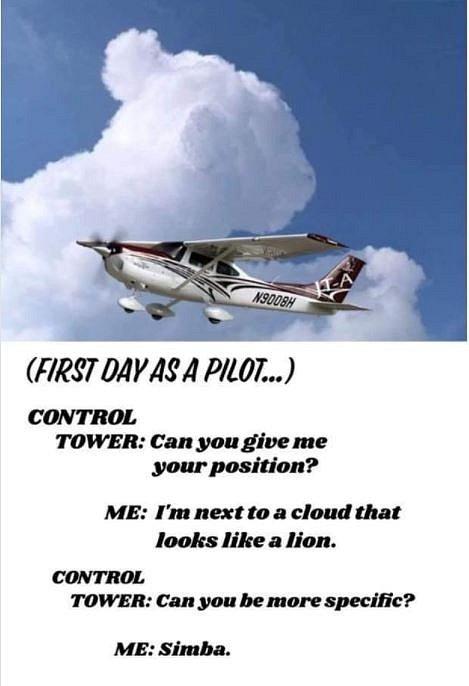 První den pilotem. Kontrolní věž: Můžete udat svou pozici? Já: Jsem vedle mraku, který vypadá jako lev. Kontrolní věž: Můžete být konkrétnější? Já: Simba.