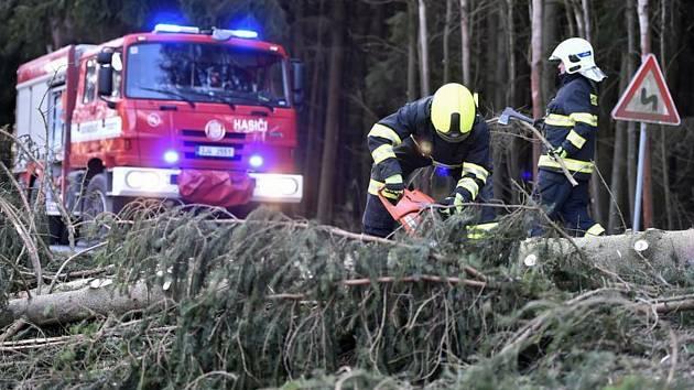 Odstraňování stromů ze silnice. Ilustrační snímek