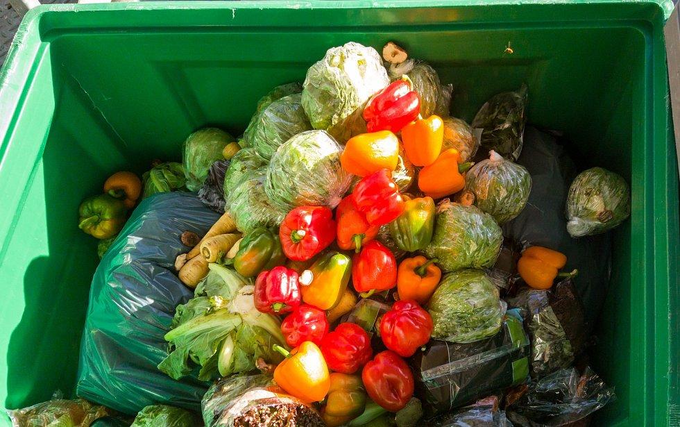 Na smetištích každoročně skončí více než miliarda tun potravin.