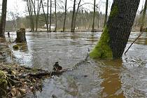 Rozvodněná řeka. Ilustrační snímek