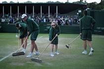 Úprava dvorce na Wimbledonu.