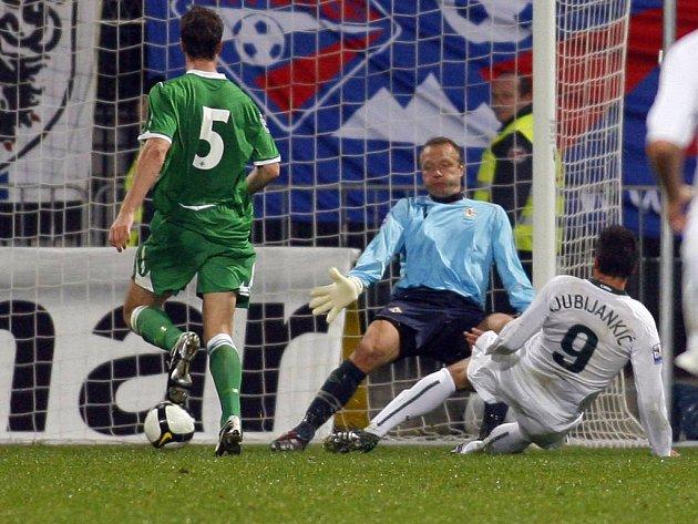 Slovinec Zlatan Ljubljankič (v bílém) střílí druhý gól do sítě Severního Irska.
