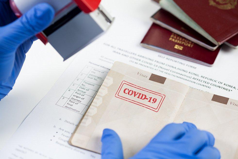 Očkovací pas - Ilustrační foto
