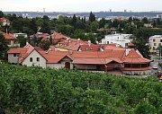 Vinice Salabka v pražské Troji