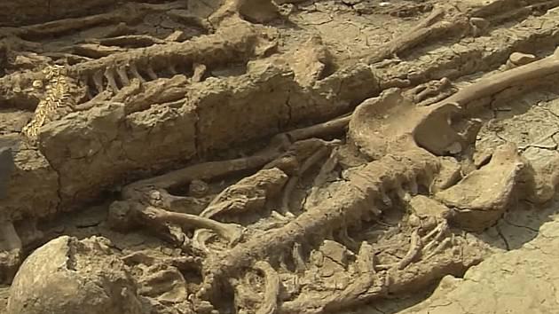 Muž byl pohřben s manželkou a třemi dětmi