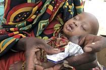 V příštím roce bude kvůli nejhoršímu suchu za poslední desetiletí potřebovat potravinovou pomoc více než deset milionů Etiopanů.