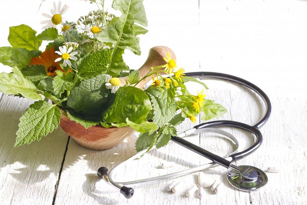 Přestože je fytoterapie známá tisíce let, stále je považována za alternativní léčbu.