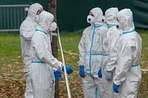 Testování na nákazu koronavirem - Ilustrační foto
