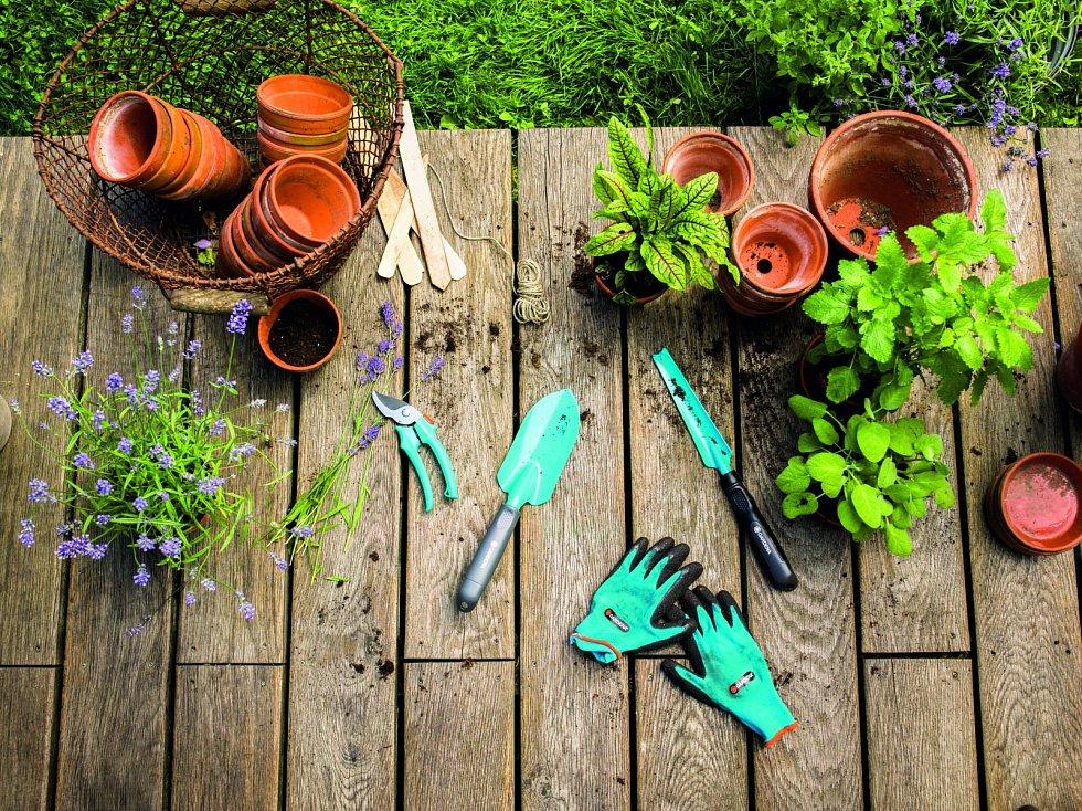 Podzim na zahradě, podzimní výsadba, ilustrační foto