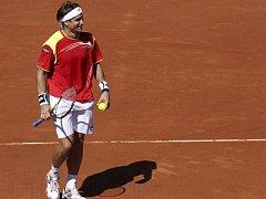 Španěl David Ferrer v semifinále Davis Cupu.