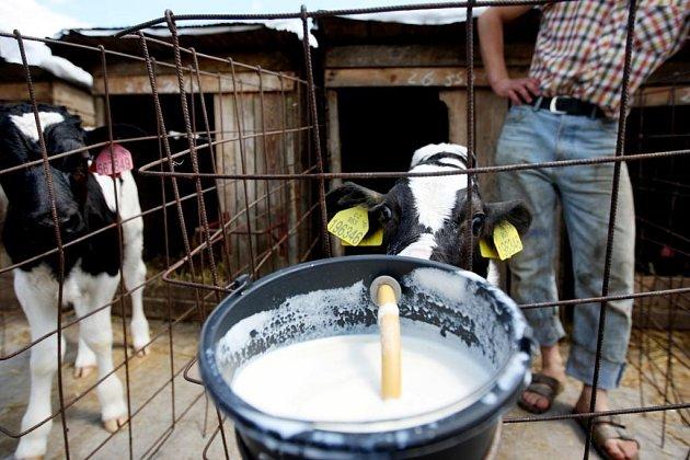 Zemědělci v celé zemi se snaží zvýšit výkupní ceny mléka, které v posledních měsících natolik klesly, že to pro farmáře znamená existenční problémy.