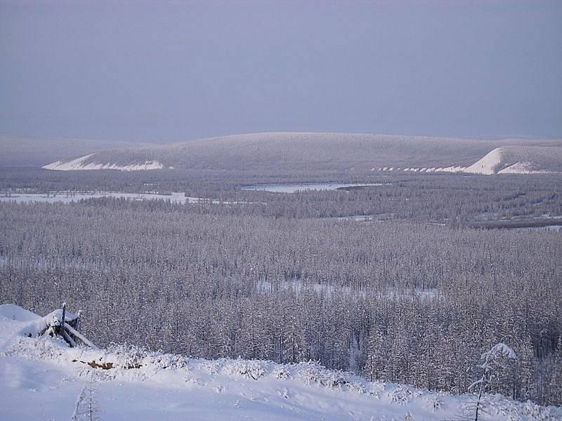 Nejnižší naměřenou teplotou v sibiřské tajze bylo −68°C
