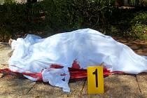 Podle britského ministerstva zahraničí je mezi 38 oběťmi pátečního teroristického útoku v tuniském letovisku Súsa nejméně 15 Britů.