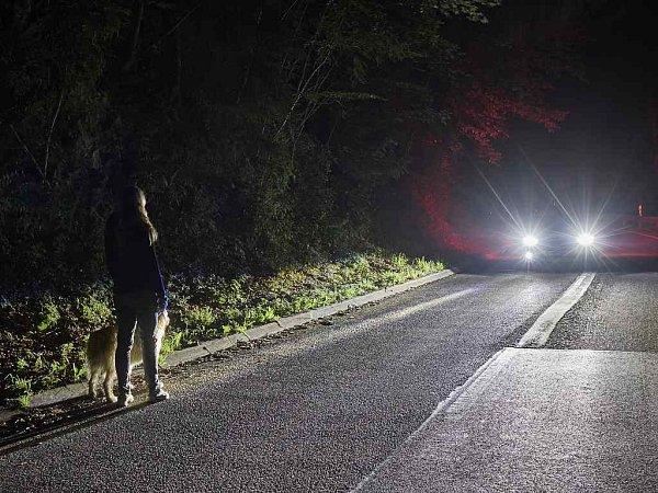 Ford vyvíjí inteligentní světlomety, které osvětlí osoby izvěř ve tmě.
