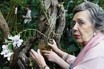 Herečka Jiřina Jirásková v botanické zahradě.