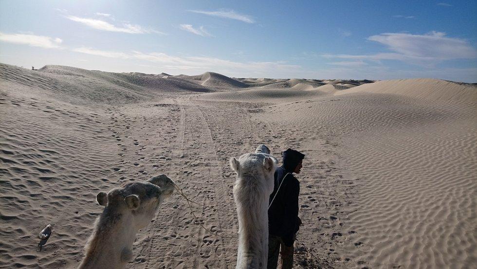 Poušť viděná z velbloudího hřbetu.