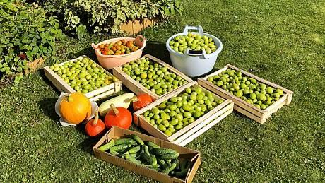 Tipy na uchování potravin
