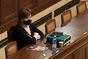 Ministryně financí Alena Schillerová 22. prosince 2020 v Praze na schůzi Poslanecké sněmovny