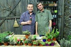 Oblíbené rostliny pro děti podle Jakuba Krulicha.