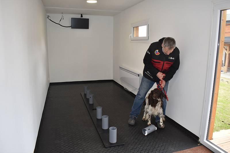 Psi cvičí testování na vyhledávání vzorků od covidových pacientů.