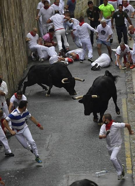 Běh s býky v Pamploně