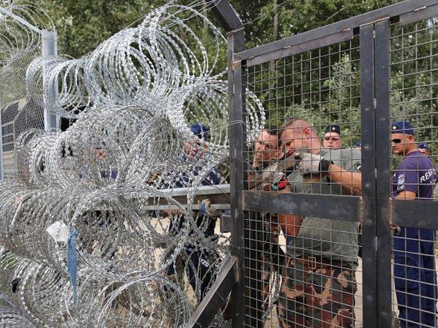 Dočasný plot na hranici s Chorvatskem. Ilustrační foto.