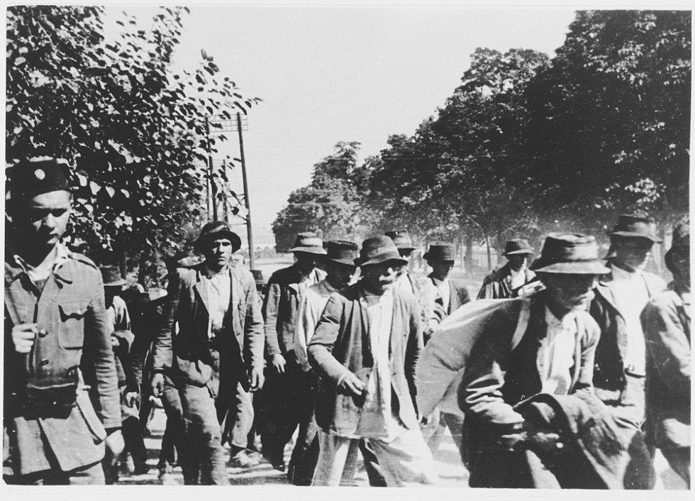 Do koncentračního tábora Jasenovac byli sváženi Židé, Srbové, Slovinci, Romové, muslimové i příslušníci chorvatské inteligence