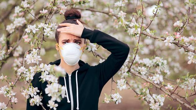 Alergie - ilustrační foto.