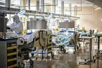 Pacienti v nemocnici ve Varese