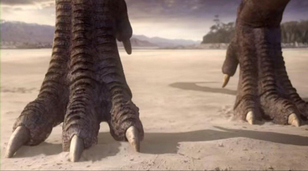 Jedním z dinosaurů žijících v Kem Kem byl Carcharodontosaurus, obří dravý teropod, jehož fosilii poprvé objevil v roce 1912 rodák z Čech, rakouský amatérský paleontolog Richard Markgraf