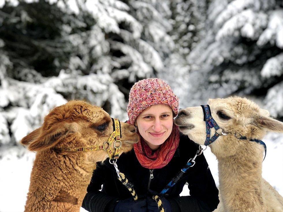 Alice Janstová a lamy alpaky