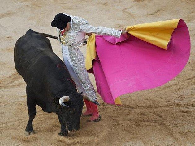 Španělské město Pamplona ve středu 6. července 2011 zahájilo nejznámější slavnosti, proslulé nebezpečnými běhy před býky. V poledne se metropole severošpanělské Navarry proměnila v místo oslav svatého Fermína, které potrvají bez přestávky devět dní.