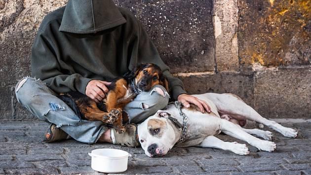 Bezdomovec. Ilustrační snímek