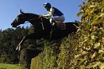 Žokej Tomáš Hurt a kůň Decent Fellow na jedné z překážek 117. ročníku Velké pardubické steeplechase, která se konala 14. října 2007 v Pardubicích