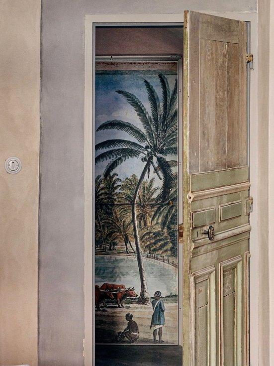 Historickou kresbu pro tapetu navrženou na míru našla Martina v knize Dutch Ceylon a nechala ji naskenovat, vytisknout a instalovat na vchodové dveře (Matrix Media)