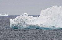 Plující ledová kra
