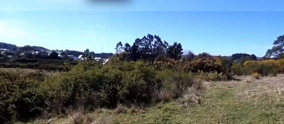Brzy poté byla v křovinách místního ostrova nalezena vypálená místa