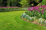 Chcete si pořídit novou sekačku? Rozhodujte se podle toho, jak velký je váš trávník, kolik času jste ochotni věnovat sekání a samozřejmě také kolik peněz hodláte investovat.