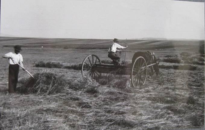 Technický pokrok v zemědělství