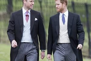Princové William a Harry