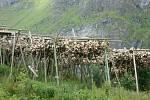 Typickým znakem Lofot jsou sušáky na tresky