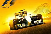 Počítačová hra F1 2014.