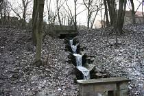 U památného dubu vyvěrá voda ze zámeckého rybníka.