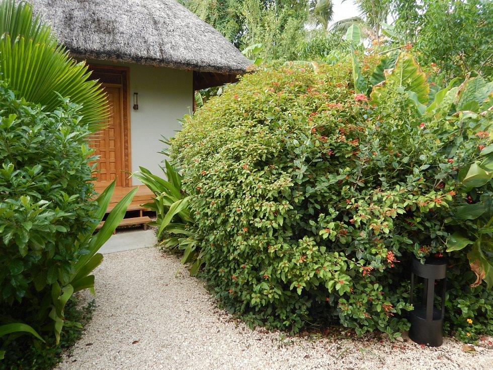Výsadba v prázdninovém resortu Zuri na Zanzibaru